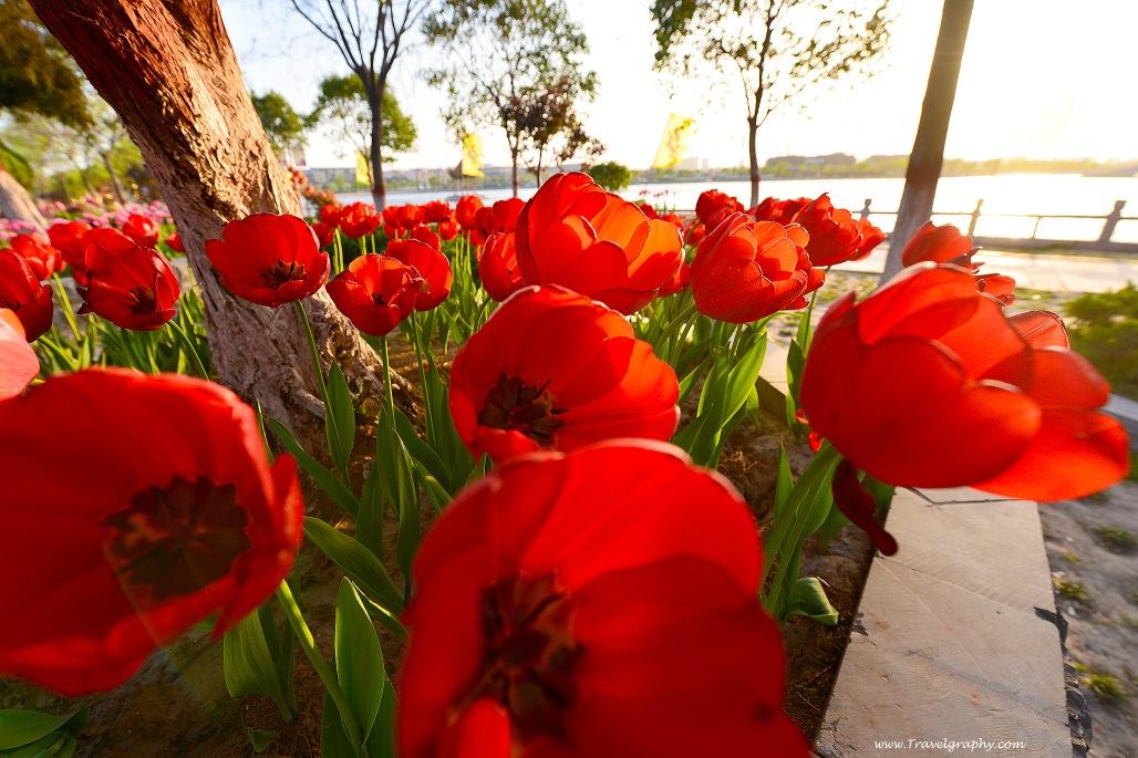 www.Travelgraphy.com_DSC_6775_2