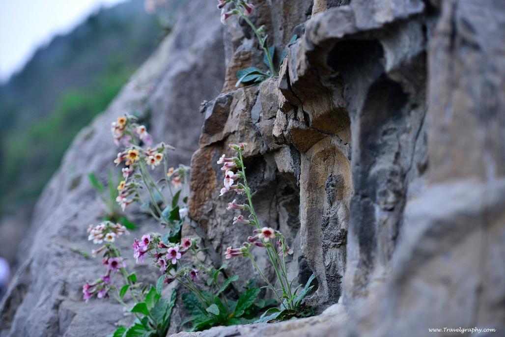 www.Travelgraphy.com_LZH6462